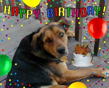 happy birthday dog images free ; 4748a68a914d3f09c78b3e09e81692b7_free-dog-graphics-cat-graphics-images-free-photo-animations-dog-happy-birthday-clipart_350-281