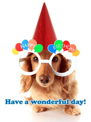happy birthday dog images free ; b_day382-ac8d6e83877c20cd99b102561efc42ba