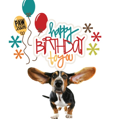 happy birthday dog images free ; blogger-image--1229274192