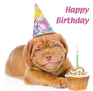 happy birthday dog images free ; s-l300