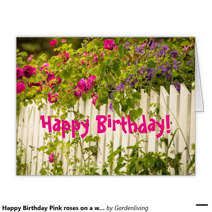 happy birthday garden images ; 52359b741ba4a0ea8b6ff4c31054d8b2--white-gardens-garden-fences