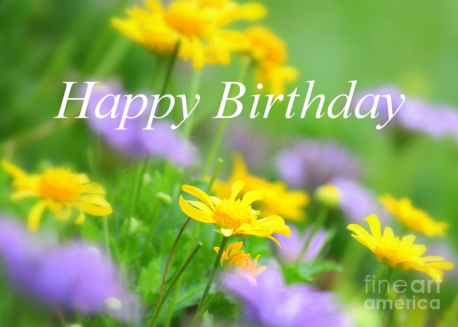happy birthday garden images ; flower-garden-birthday-card-carol-groenen