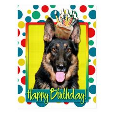 happy birthday german shepherd greeting ; 0a0c0ed96ad88ee84fa884974c13dd5f