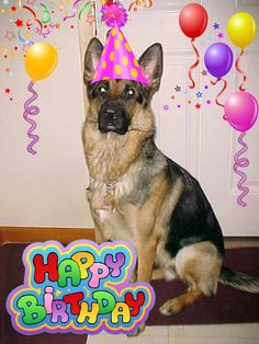 happy birthday german shepherd greeting ; 5ceb6e81a497c4f397da89b9c7bc299a--birthdays-happy-birthday