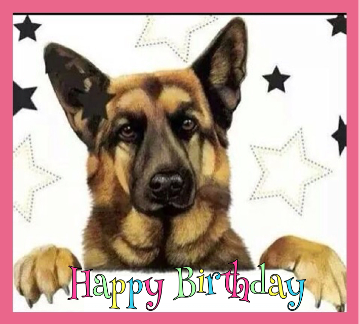 happy birthday german shepherd greeting ; 72e1178e69a3d441ef8f007ac6c26a39
