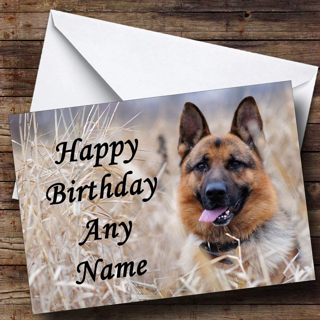 happy birthday german shepherd greeting ; 817XkaDPvNL