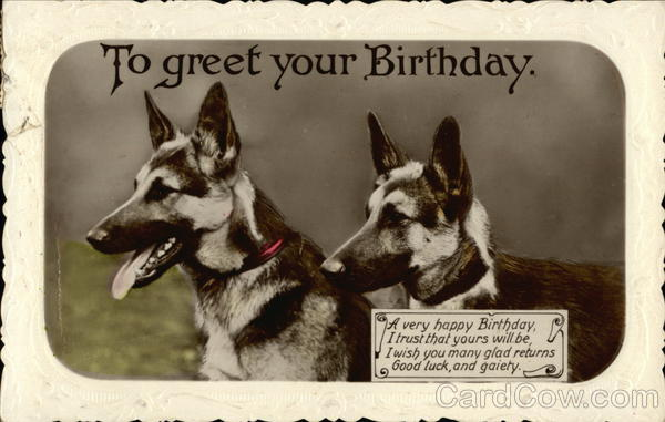 happy birthday german shepherd greeting ; card00647_fr