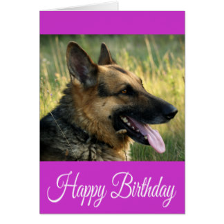 happy birthday german shepherd greeting ; happy_birthday_german_shepherd_puppy_dog_card-re0c508859e4843deab5960433668da6b_xvuat_8byvr_324