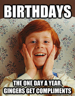 happy birthday ginger meme ; 324781517d3510144dad581e2a9800dc