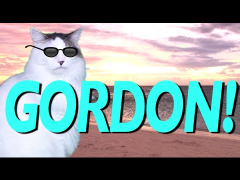 happy birthday gordon ; hqdefault-3