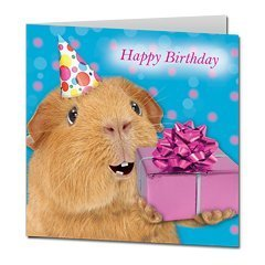 happy birthday guinea pig ; 31g1R5sJMJL