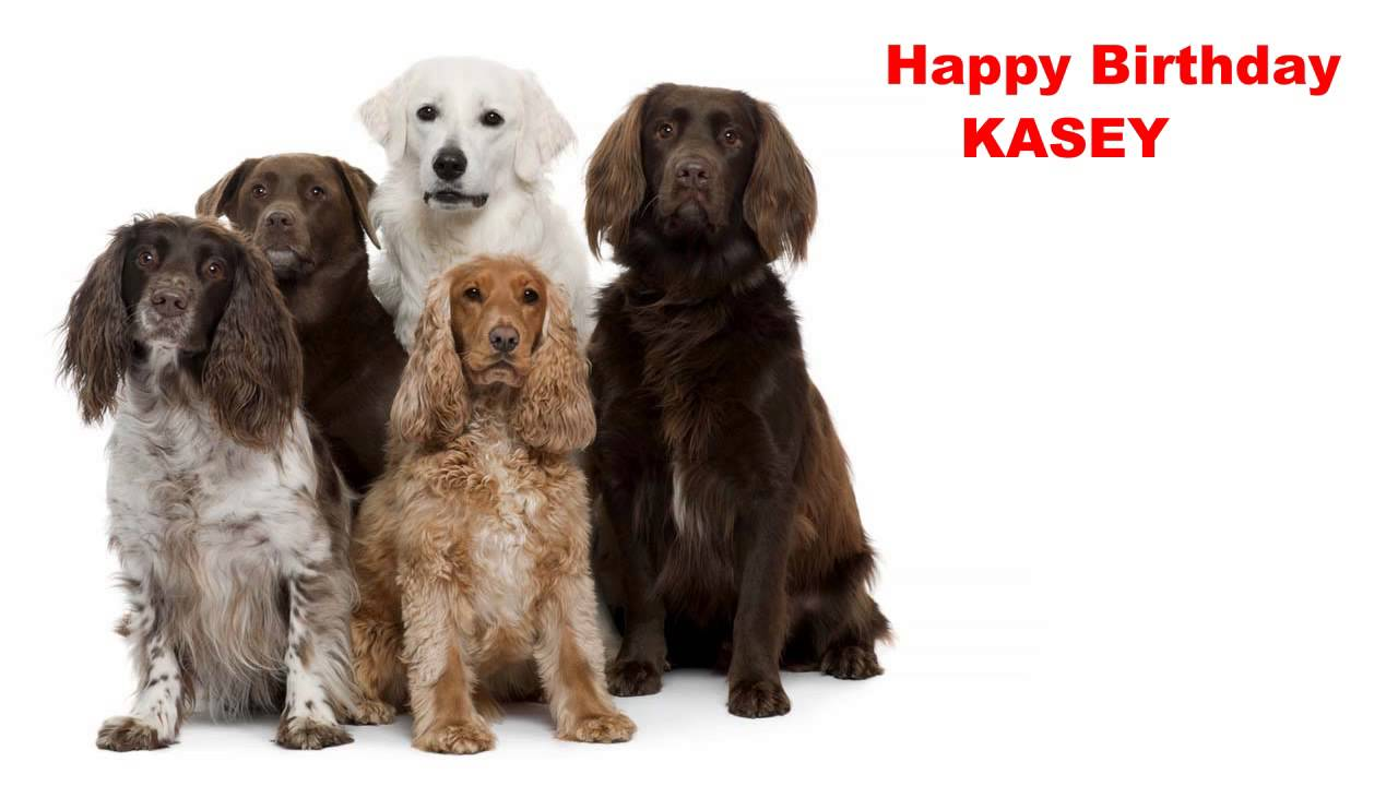 happy birthday kasey ; maxresdefault-1