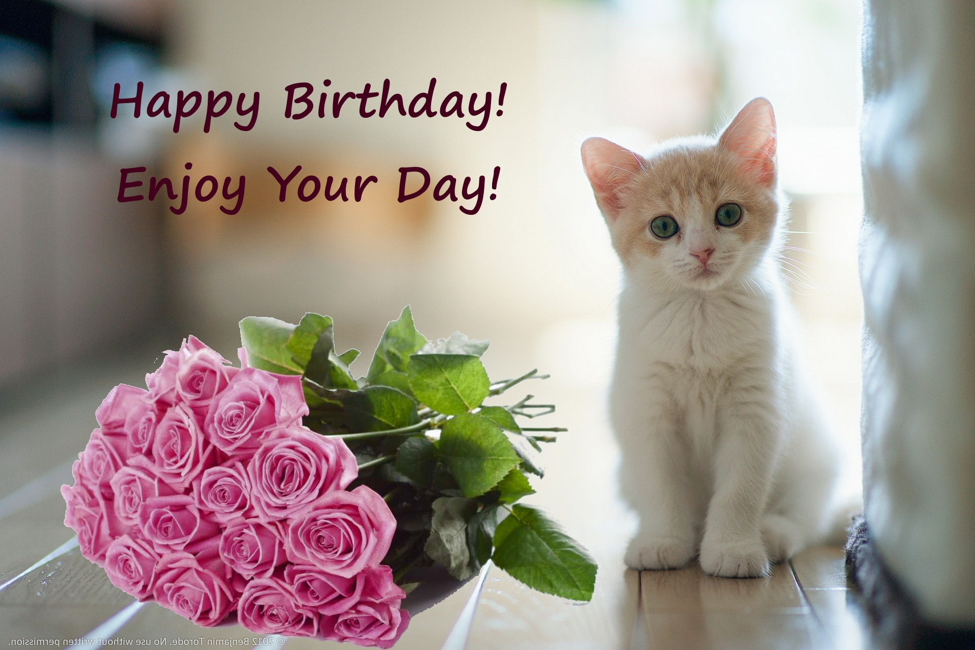 happy birthday kitty ; Happy-Birthday-with-kitten-and-flowers-roses