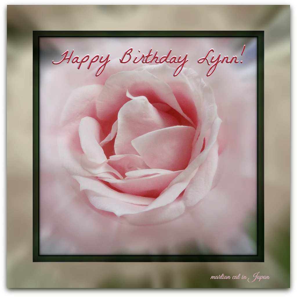 happy birthday lynn ; 33785736965_569279c705_b