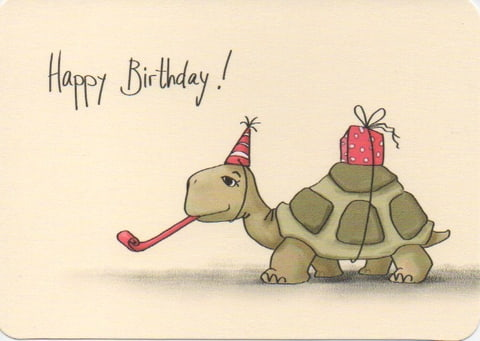happy birthday turtle images ; 9281630-60e39be8_480_480
