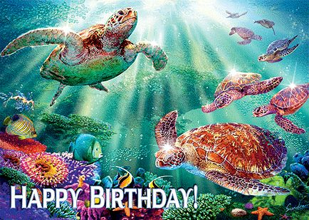happy birthday turtle images ; Happy-Birthday-Wiches-hawaiian-birthday-cards-for-facebook-Turtle-Voyage-Hawaiian-Happy-Birthday-G