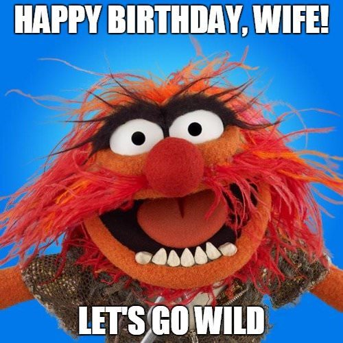 happy birthday wife funny ; Funny-birthday-wish-on-image-of-the-wild-animal-from-the-muppet-show