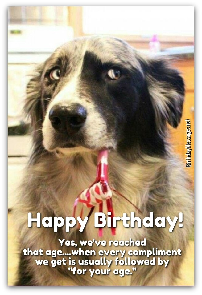 happy birthday wish funny images ; funny-birthday-wishes1A