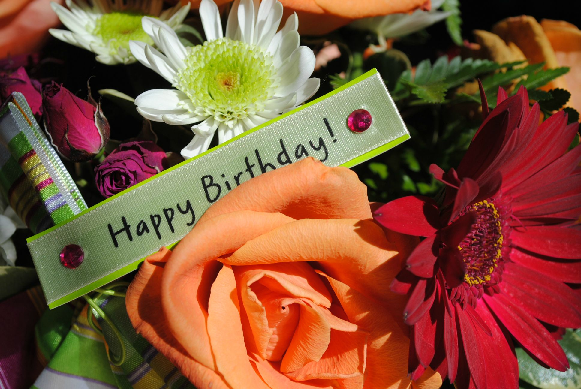 happy birthday wish you many more to come ; happy-birthday-wish-you-many-more-to-come-qiwp2oy