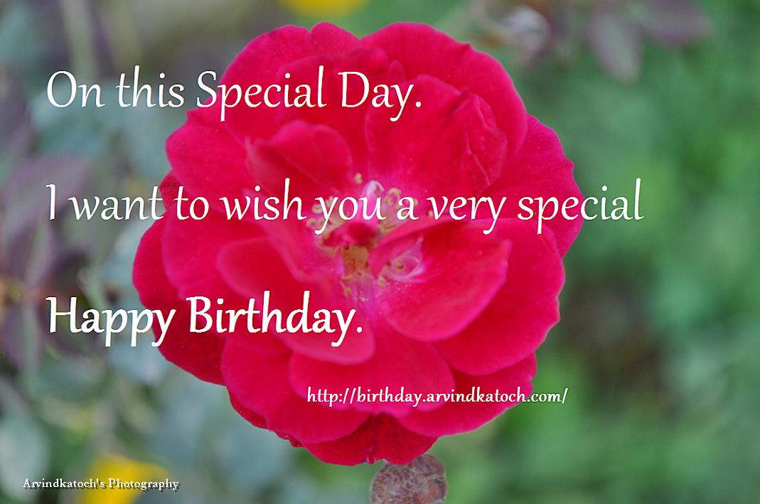 just wanted to wish you a happy birthday ; i-want-to-wish-you-a-very-happy-birthday-367cc26759aa105f2500976d628ff046