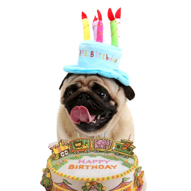 puppy happy birthday images ; Cute-Pet-Cat-Dog-Happy-Birthday-Caps-Soft-Material-Candles-Design-Pets-Cap-Hat-Birthday-Party