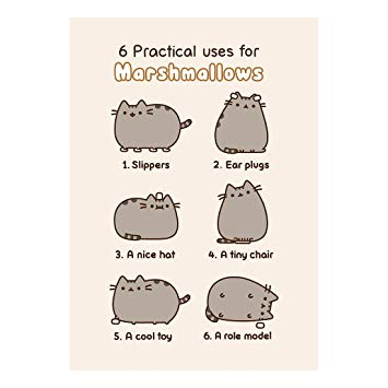 pusheen birthday card uk ; 61HXc76nhQL