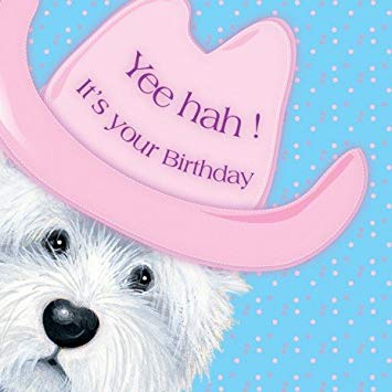 westie birthday card ; 510HqmzusUL