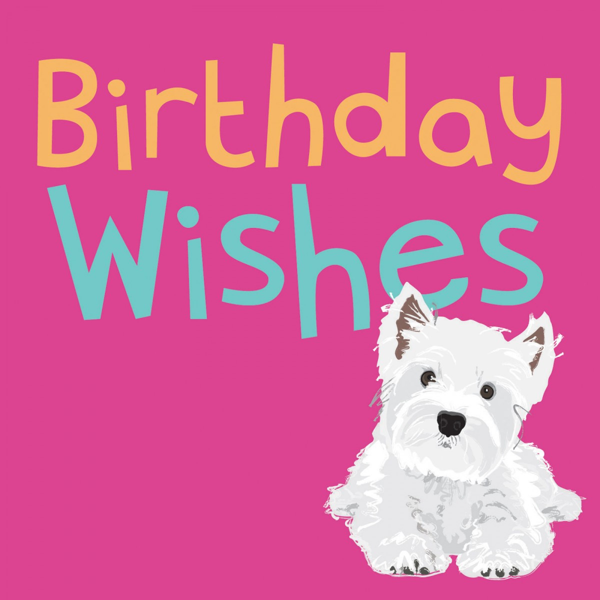 westie birthday card ; westie-birthday-card-dogs-trust-west-highland-white-terrier