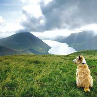 woodmansterne two friends mountains birthday card ; 6d5fee6c6d21299bd0f975950e394c38--cumbria-national-trust